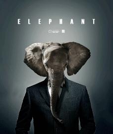 创意大象海报图片