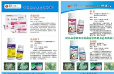 农产品宣传单页图片