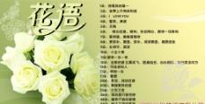 玫瑰花语图片