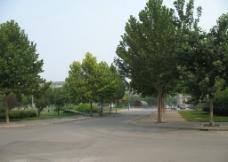 校园风光图片