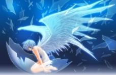 天使凌波丽高清壁纸图片