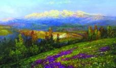开遍鲜花的山野图片