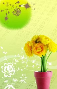 橘色花盆图片
