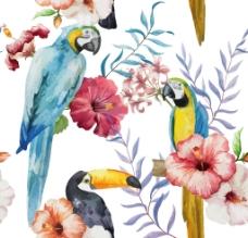 唯美热带水彩背景动植物鹦鹉绣球图片