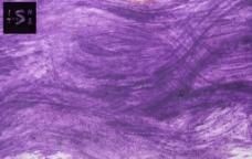 水墨 墨染 墨迹肌理纹图片