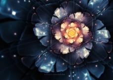 绚丽的花朵背景图片
