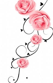 黑花纹 藤枝 玫瑰花树枝