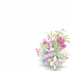 花朵主图背景