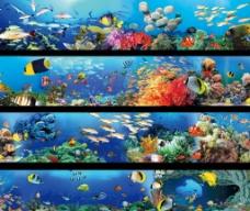 全画幅海底世界图片