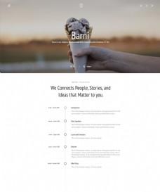 网页博客制作样式