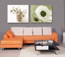 客厅花朵装饰画