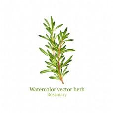 清新绿色植物插画
