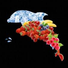 水果冰块海豚