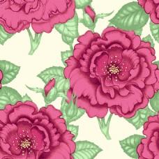 时尚唯美花朵植物