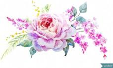 艺术水彩绘玫瑰花插画