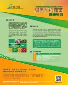果蔬公司介绍海报设计