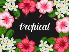 时尚唯美热带花朵插画