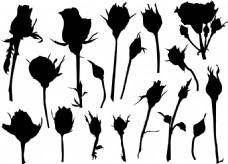 时尚剪影花朵花苞插画