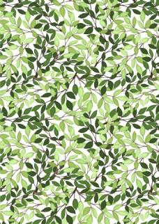 绿色植物叶子无缝背景