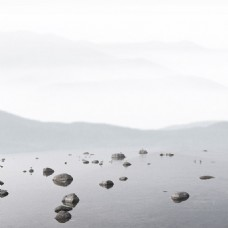 淘宝茶叶清新岩石背景