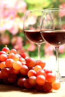 葡萄和葡萄酒