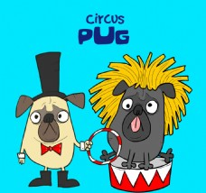有趣的哈巴狗与马戏团的服装