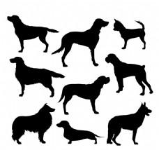黑色狗的轮廓剪影