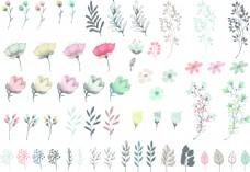 时尚卡通清新手绘花朵插画