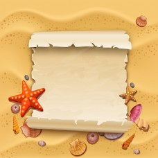 沙滩上的海星和贝壳插画