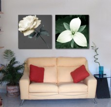 客厅花卉装饰画