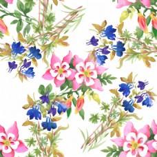 水彩绘花朵插画