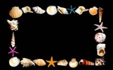 貝殼邊框圖片