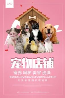 宠物医院店铺宣传海报