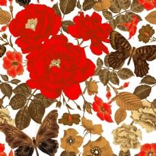 时尚红色玫瑰花植物