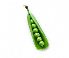 新鲜翠绿剥开的荷兰豆psd源文件
