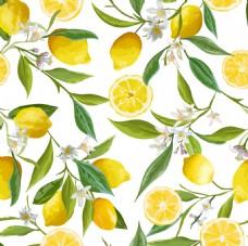 时尚清新柠檬插画