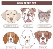 不同种类卡通狗表情