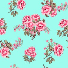 时尚彩色玫瑰花植物