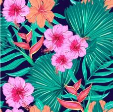 唯美时尚的热带植物