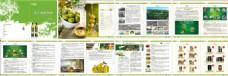 橄榄油绿色产品企业宣传画册