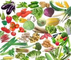各种蔬菜PSD分层素材免费下载图片