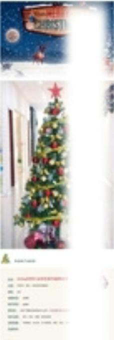 圣诞树详情页图片
