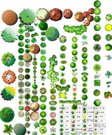 各种室内外植物绿化